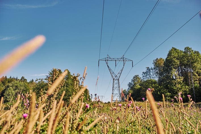 Illustration Summer meadow and pylons